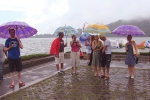 Heerlijk in de regen, frist het lekker van op