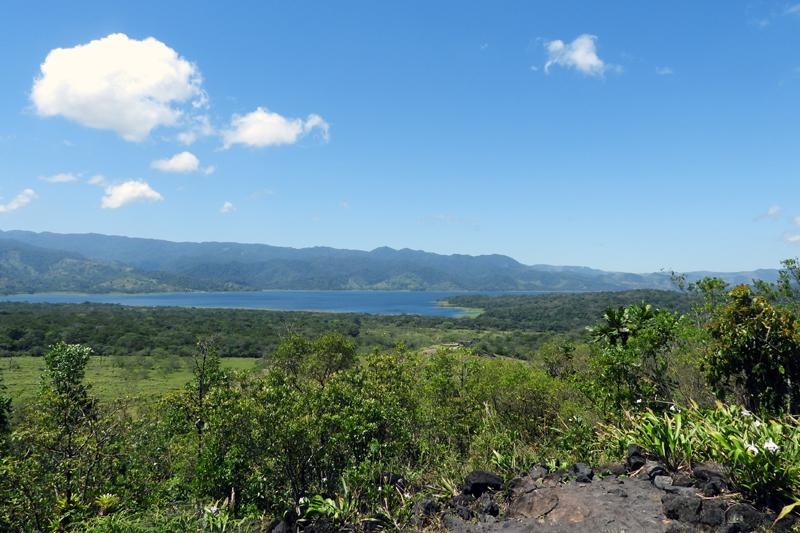 Arenal Hike door het tropisch regenwoud