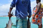 Schipper brengt tonijn aan wal