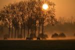 Zonsopgang Scheendijk