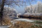 Winter op de Scheendijk, Mooiste foto van Nederland 2014