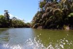 Excursie per boot in de kanalen van Tortuguero