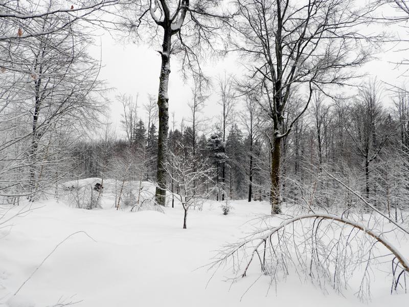 Iedere nacht een flink pak sneeuw