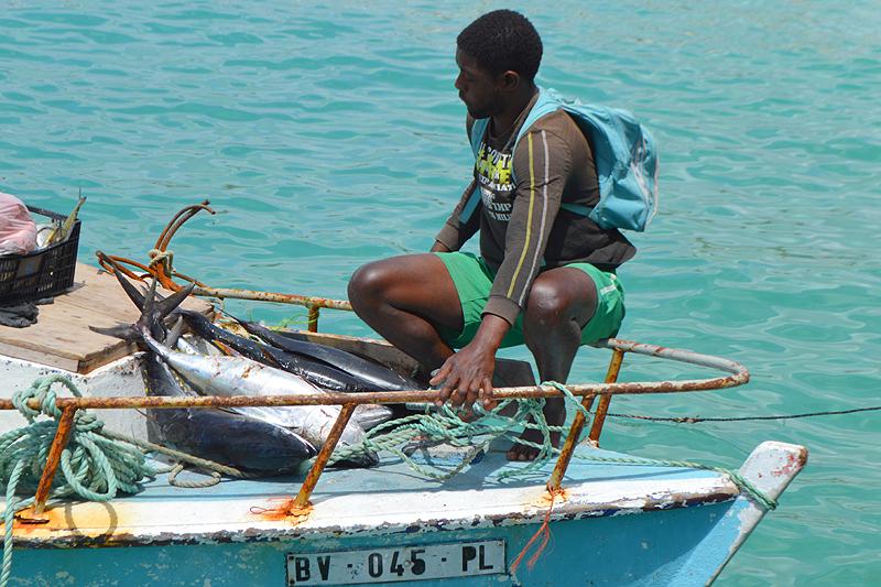 Vissersboot met verse tonijnen