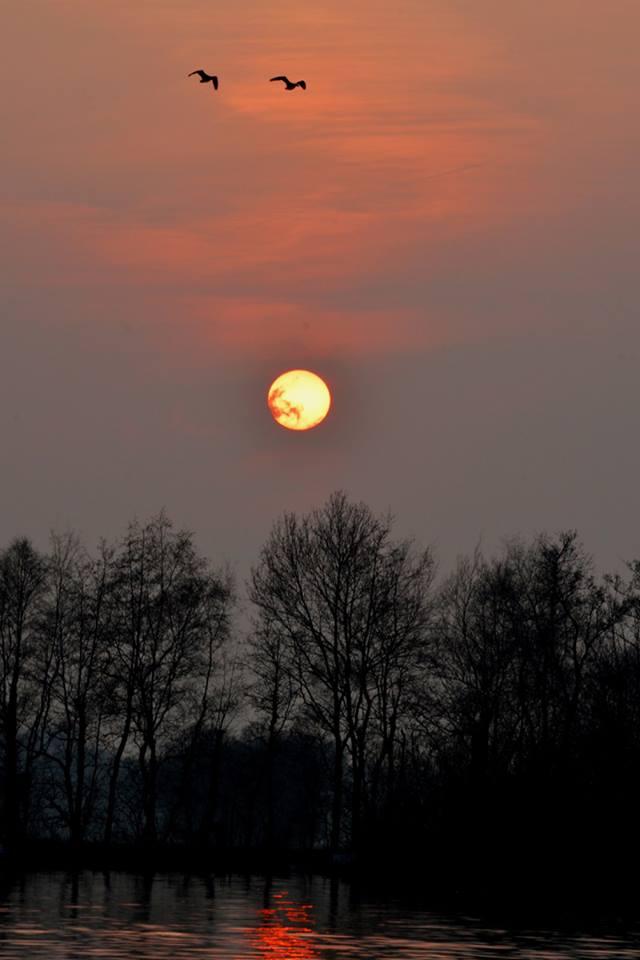 Zonsondergang trekgaten Scheendijk