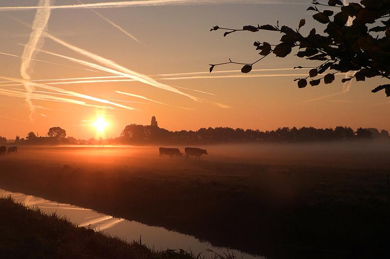 Good morning Scheendijk, Nikon coolpix P1000 Plus zoom