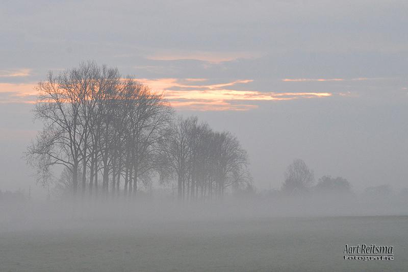 Scheendijk in de mist