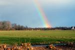 Prachtige regenboog boven de Scheendijk