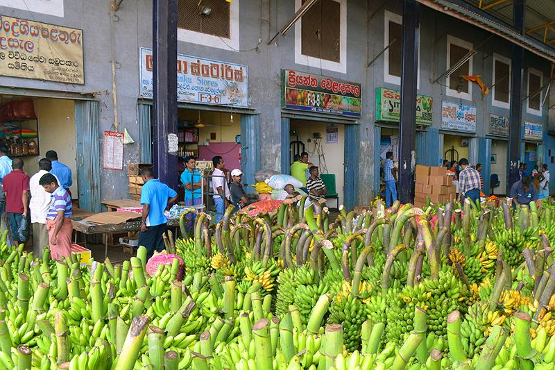 Overdekte groente en fruithal