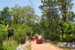 Toertje door de jungle met de Tuktuk